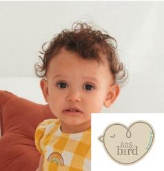 LACARA registered model for LittleBird